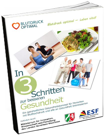 NEW_ecover_book_in3Schritten Kopie